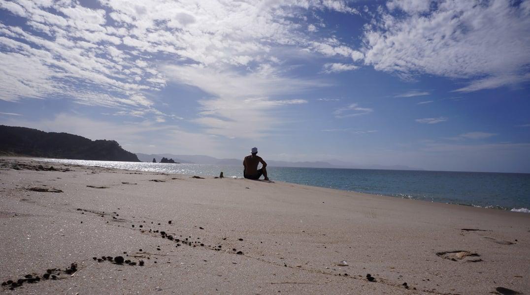 dion-vmbo-naar-master-nieuw-zeeland